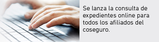 Expedientes Online